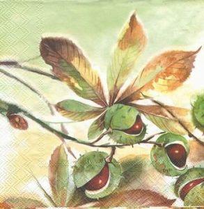 Салфетка для декупажа, 0527, 33х33 см, Каштаны, фон салатовый ― HandMadeDecor