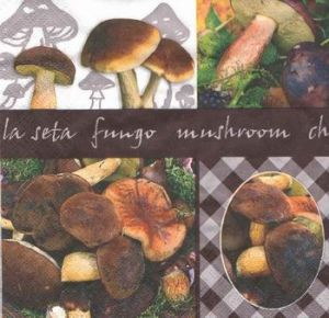 Салфетка для декупажа, 9306, грибы ― HandMadeDecor